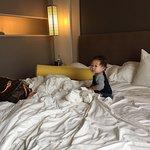 Foto di Kimpton Hotel Wilshire