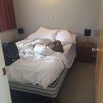 Foto di Aorangi Motel