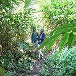 Complimentary spice garden tour