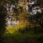 Foto de Ulcumano Ecolodge