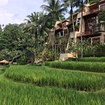 Foto de Four Seasons Resort Bali at Sayan