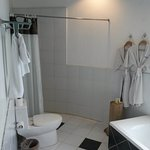 shower, toilet, bathtub