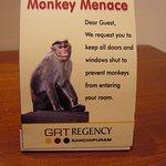 WARNING ABOUT MONKEY MENACE