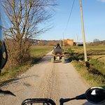 Photo of Umbria in Quad