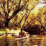 Foto de Canoe Outpost - Little Manatee River