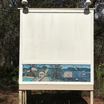 Amphitheater sign that looks like strange wifi? The live oak! The built in projector screen. Tid