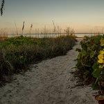Foto di The Beachcomber
