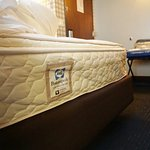 """Slightly"" deformed mattress in $150+/night Hilton - Room 1701"