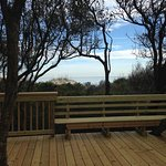 Photo de Hampton Inn & Suites Jekyll Island