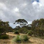 Kangaroo Island Bush Getaway
