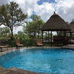 Hoyo-Hoyo Safari Lodge Foto