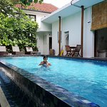 Lovely swimming pool surrounded by tropical gardens