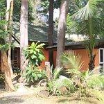 Paradise Palms Resort Foto