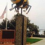 U.S. Navy Seabee Museum Foto