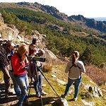 Excursões pela natureza e vida selvagem