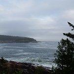 ocean trail