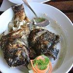 Garoupa fish grilled with garlic