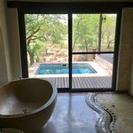Foto de Simbambili Game Lodge