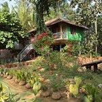 The stilt hut