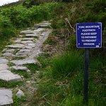 Foto di Torc Mountain Walk