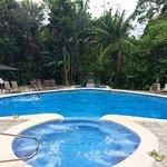 Pool in Form einer Schildkröte