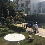Photo of Indira International Hotel