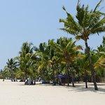 beach (10min walk)