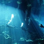 Diving with Lilly in Chac-Mool