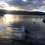 Place Windermere view at White Cross Bay