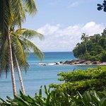 Foto de Casa Bambu Resort