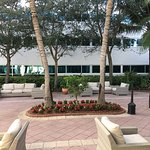 Hilton Garden Inn West Palm Beach Airport Foto