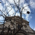 Photo de Free Tour Rome - Walking Tours in Rome