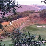 10th fairway/winery