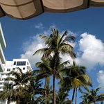 Photo de Hotel Riu Plaza Miami Beach