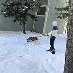 Photo de Black Bear Lodge