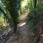 trail to the palapa