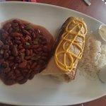 Veg Burrito
