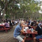 Unique Sunday Brunch local in Tampa