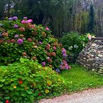 Photo de Lissyclearig Thatched Cottage