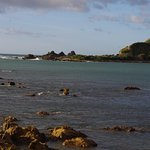The rocks of Island Bay