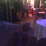 Dallas & Hemingway enjoying the libations & victuals from the Ojai jazz band...