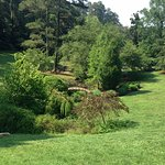 Beautiful and verdant gardens