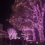 Shinjuku Southern Terrace Foto