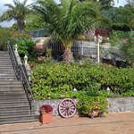Ocean Gardens Foto