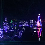 Biggest light show in the Zoo that moves to music