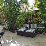 Lugn och mysig innergård med djungelkänsla.