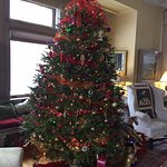 Christmas Tree in the Main House