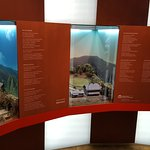 Waldgeschichtliches Museum