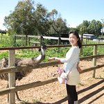 Foto de Greenough Wildlife Park