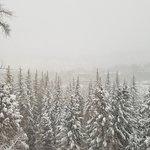 Photo de Aspen Meadows Resort